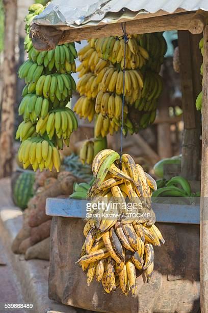 Market stall with bananas, Samana Province, Dominican Republic