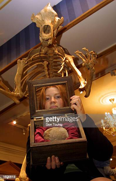 Marketing officer Alison Driver holds a Therizinosaur egg August 3 2001 at the Fortnum and Mason''s exclusive department store in London United...