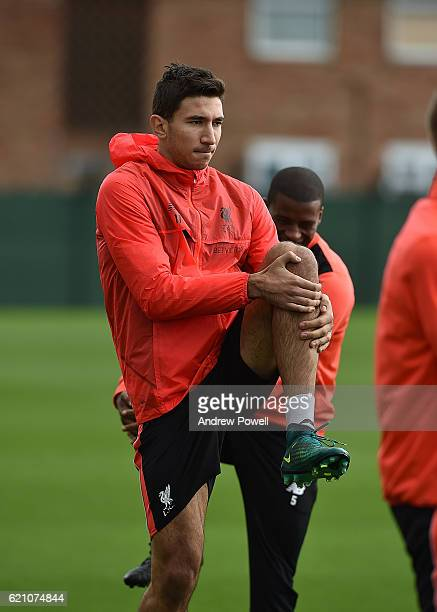 Marko Grujic of Liverpool during a training session at Melwood Training Ground on November 4 2016 in Liverpool England