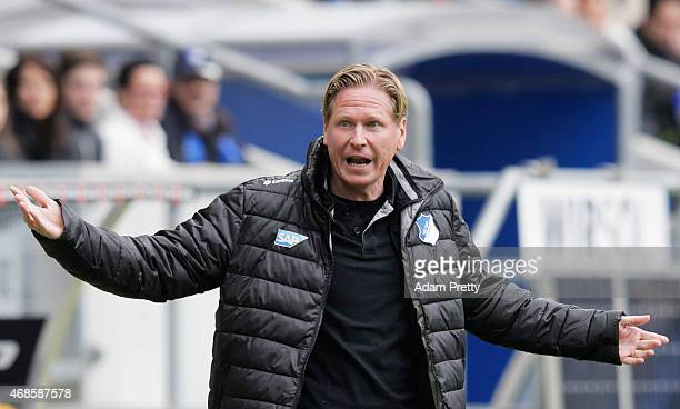 Markus Gisdol Head Coach of 1899 Hoffenheim has a discussion with the linesman during the Bundesliga match between 1899 Hoffenheim and Borussia...