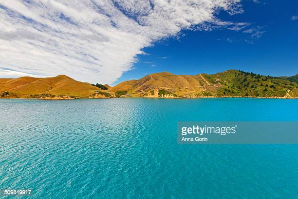 Marlborough Sounds in summer
