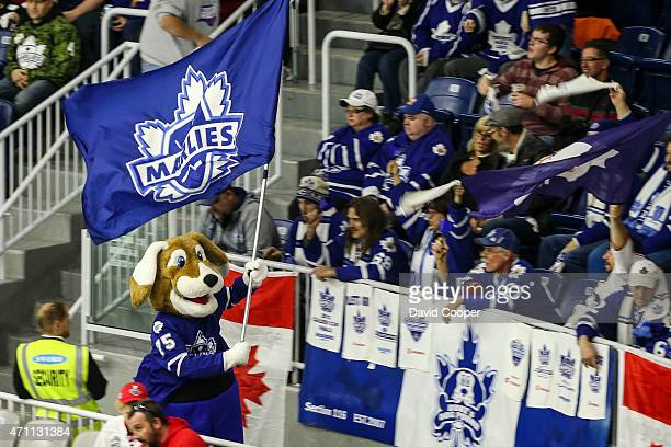 TORONTO ON APRIL 25 Marlies fans celebrate with Duke the Marlies Mascot near the end of the game as the Marlies took the first game 74 in the best of...