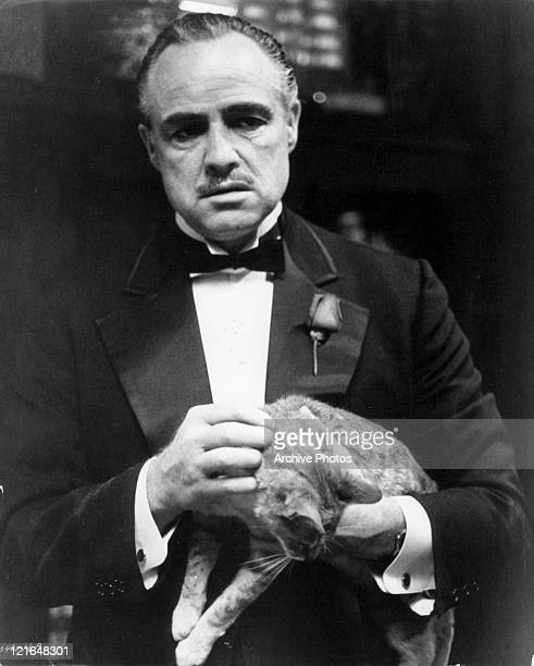 Marlon Brando holding a cat in a scene from the film 'The Godfather' 1972