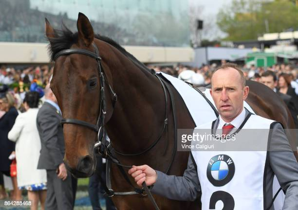 Marmelo parades before Race 8 Caulfield Cup during Melbourne Racing on Caulfield Cup Day at Caulfield Racecourse on October 21 2017 in Melbourne...