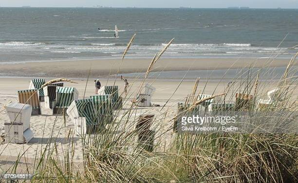 Marram Grass Beside Hooded Beach Chairs At Seaside