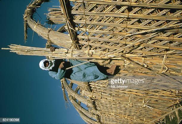 Marsh Arab Building a Reed House