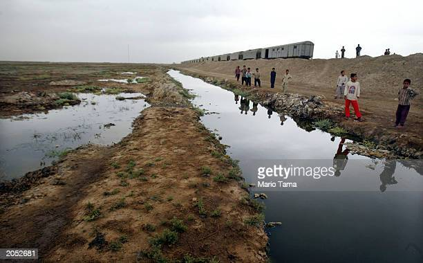 Marsh Arab children stand in a marsh area that is slowly being reflooded with water June 2 2003 in Suk Shuykuh Iraq The Marsh Arabs have inhabited...