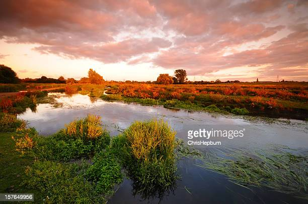 Marshland Sunset