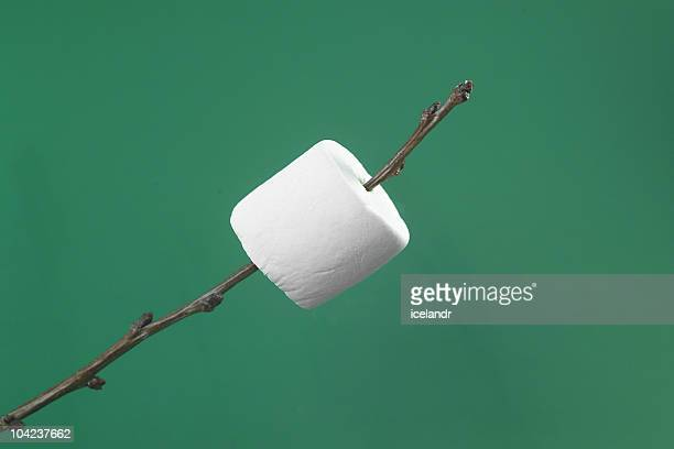 Marshmallow on a twig.