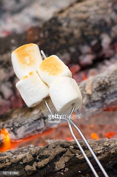 Rösten Marshmallows