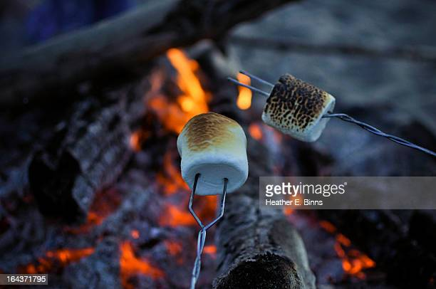 marshmallows roasting over bonfire