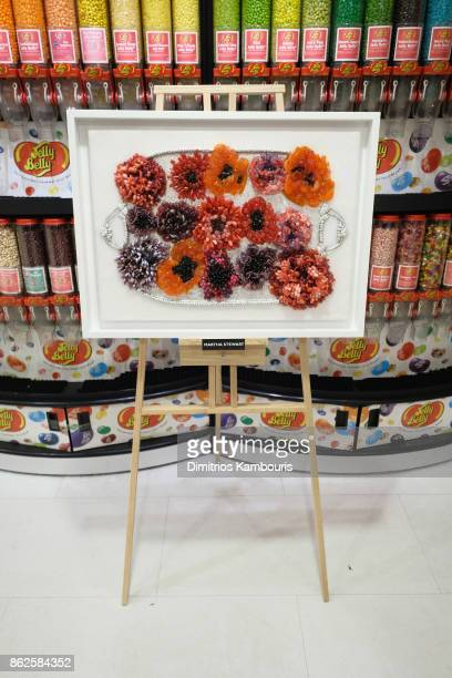 Martha Stewart's artwork on display as Dylan Lauren celebrates the Sweet 16 of Dylan's Candy Bar on October 17 2017 in New York City