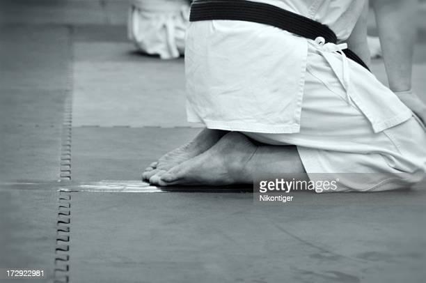 Martial Arts Abstract
