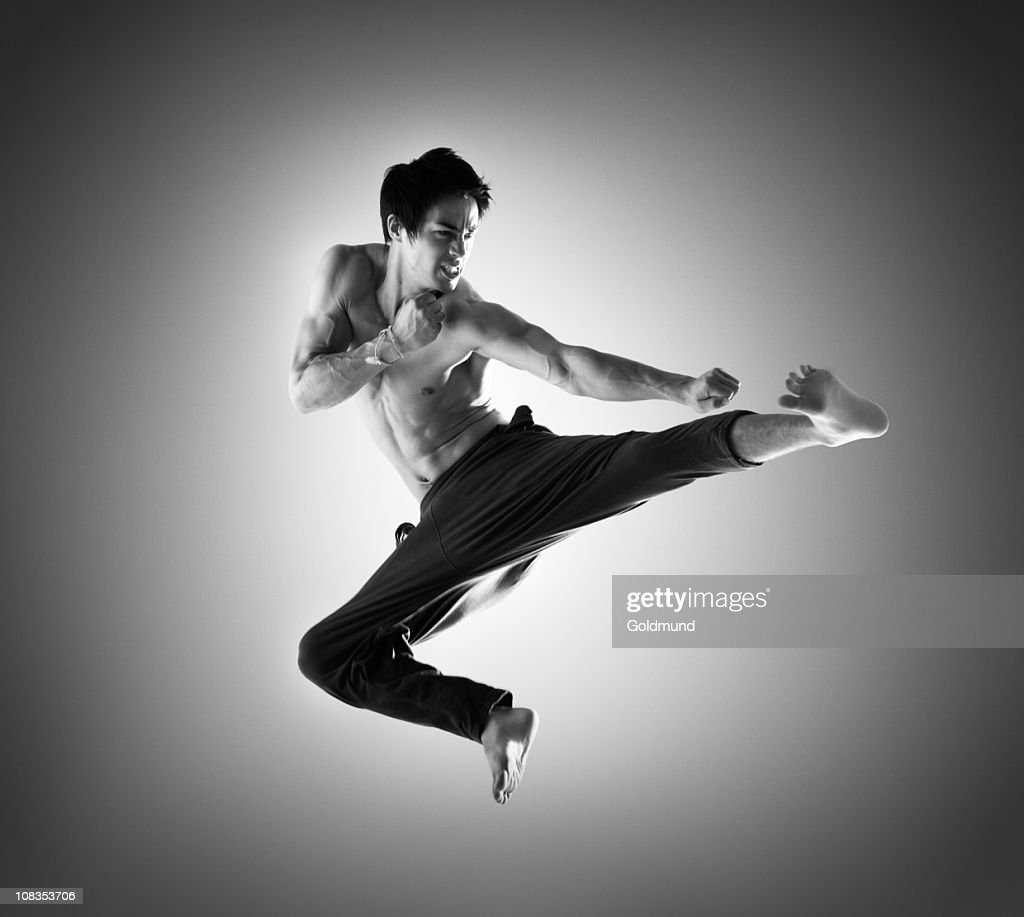 Martial Arts Fighter : Stock Photo