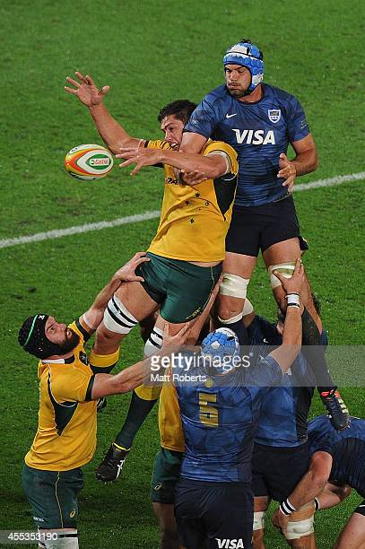 Martin Alemanno of Argentina competes for the line out with Rob Simmons of the Wallabies during The Rugby Championship match between the Australian...