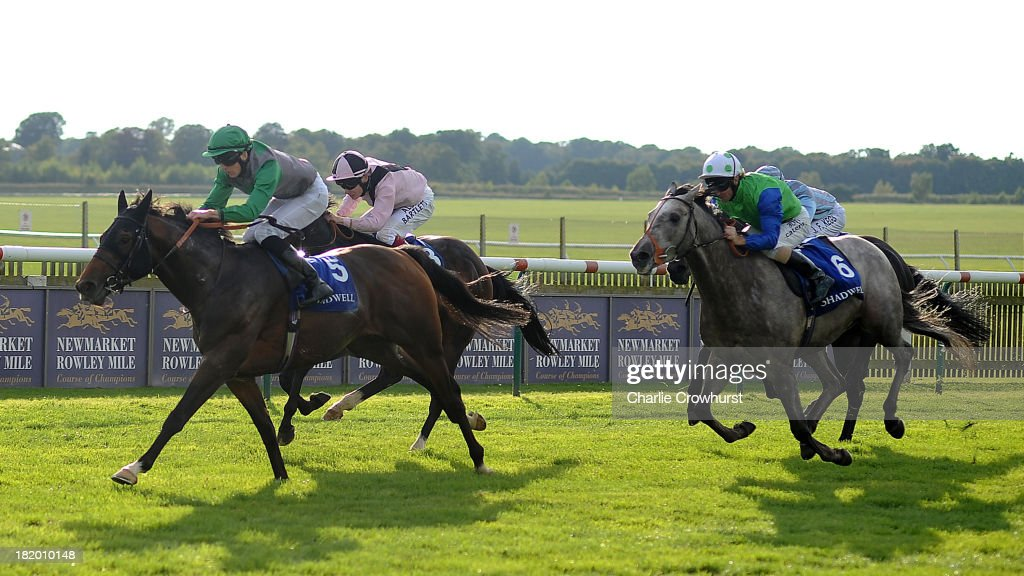 Martin Harley rides Renew to the win in The Mawatheeq Godolphin Stakes at Newmarket racecourse on September 27, 2013 in Newmarket, England.