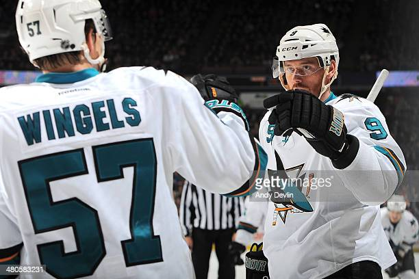 Martin Havlat and Tommy Wingels of the San Jose Sharks celebrate after a goal in a game against the Edmonton Oilers on March 25 2014 at Rexall Place...