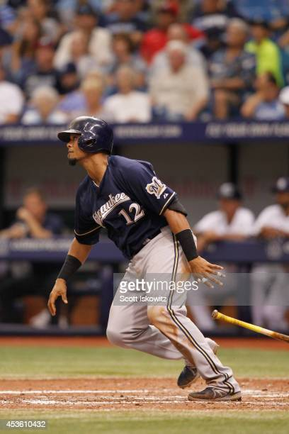 Martin Maldonado of the Milwaukee Brewers bats against the Tampa Bay Rays at Tropicana Field on July 30 2014 in St Petersburg Florida
