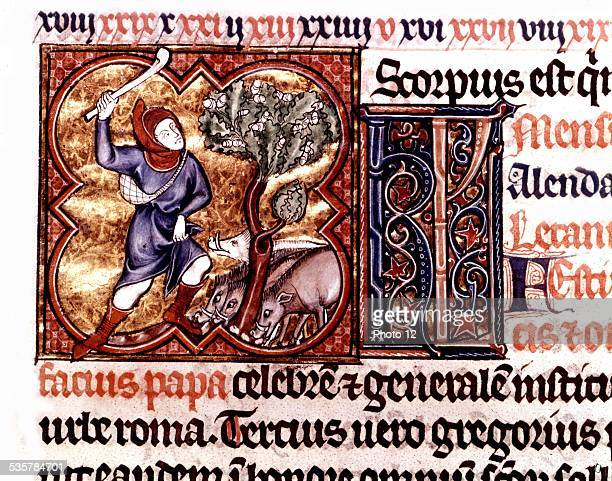 Martyrology from Saint Germain des Prés Man reaping and threshing wheat About 1270 France