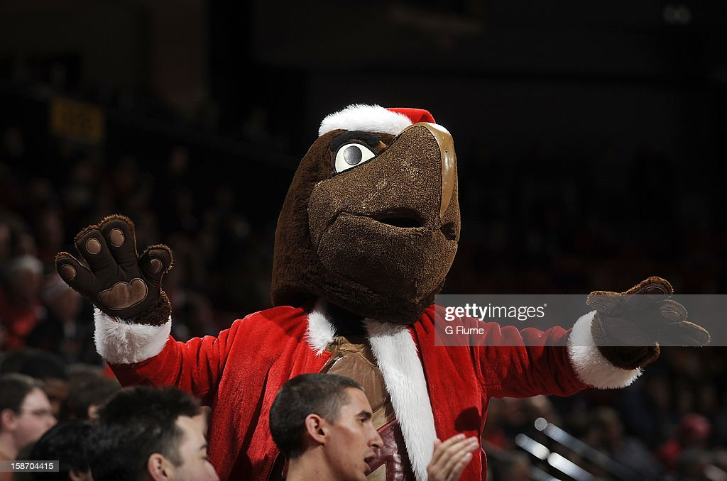 Maryland mascot Testudo performs during the game between the Maryland Terrapins and the Stony Brook Seawolves at the Comcast Center on December 21, 2012 in College Park, Maryland.