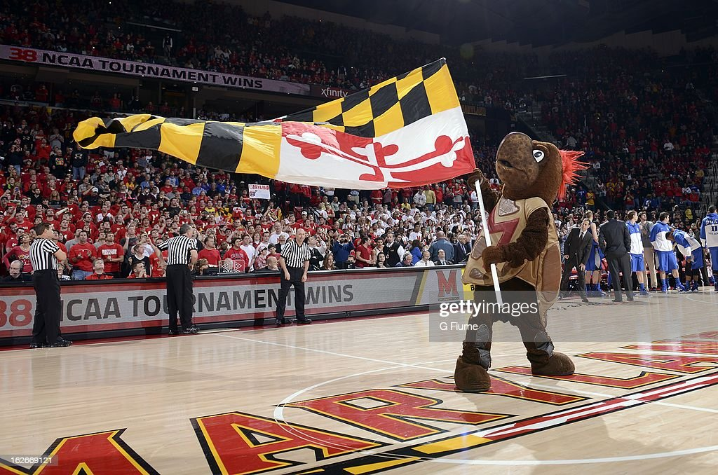 Maryland mascot Testudo performs during the game between the Maryland Terrapins and the Duke Blue Devils at the Comcast Center on February 16, 2013 in College Park, Maryland.