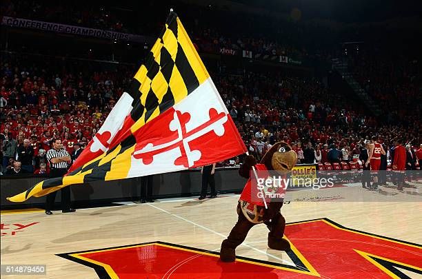 Maryland Terrapins mascot waves the flag before the game against the Wisconsin Badgers at Xfinity Center on February 13 2016 in College Park Maryland