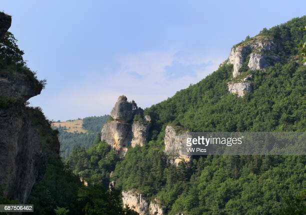 Mas Montet mountain at La Canourgue in Lozere south of France