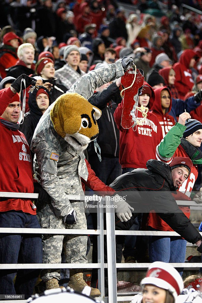 Mascot Butch T. Cougar of the Washington State Cougars wears a National Guard uniform and cheers with fans during the game against the UCLA Bruins at Martin Stadium on November 10, 2012 in Pullman, Washington.
