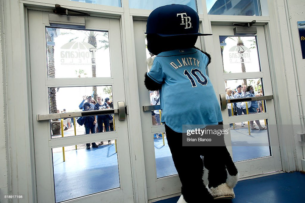 ST. PETERSBURG, FL - Mascot DJ Kitty of the Tampa Bay Rays waits for the doors to open on the Rays' Opening Day game against the Toronto Blue Jays on April 3, 2016 at Tropicana Field in St. Petersburg, Florida.