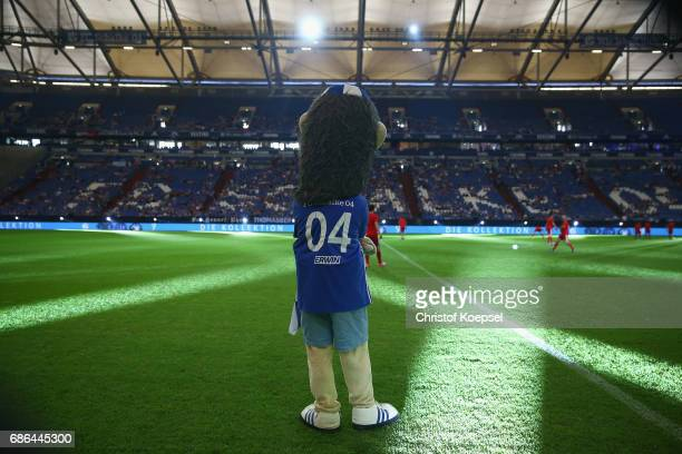 Mascot Erwin is seen prior to the 20 years of Eurofighter match between Eurofighter and Friends and Euro All Stars at Veltins Arena on May 21 2017 in...