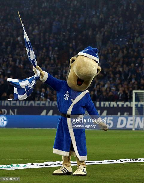 Mascot Erwin of FC Schalke 04 is seen before the Bundesliga soccer match between FC Schalke 04 and Bayer Leverkusen at the Veltins Arena stadium in...