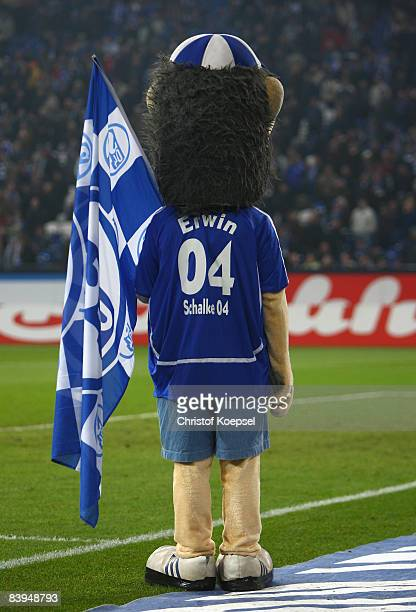 Mascot Erwin of Schalke is seen during the Bundesliga match between FC Schalke 04 and Hertha BSC Berlin at the VeltinsArena on December 6 2008 in...