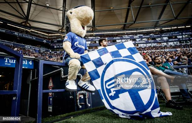 Mascot Erwin of Schalke is seen during the Bundesliga match between FC Schalke 04 and VfB Stuttgart at VeltinsArena on September 10 2017 in...