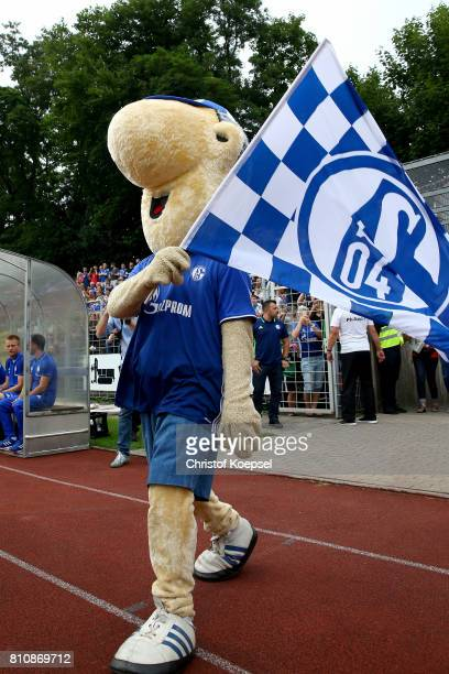 MAscot Erwin of Schalke is seen prior to the preseason friendly match between SpVgg Erkenschwick and FC Schalke 04 at Stimberg Stadium on July 8 2017...