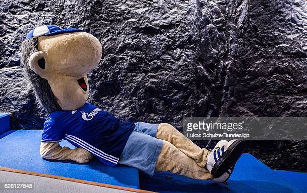 Mascot Erwin of Schalke lies in the player tunnel prior to the Bundesliga match between FC Schalke 04 and SV Darmstadt 98 at VeltinsArena on November...