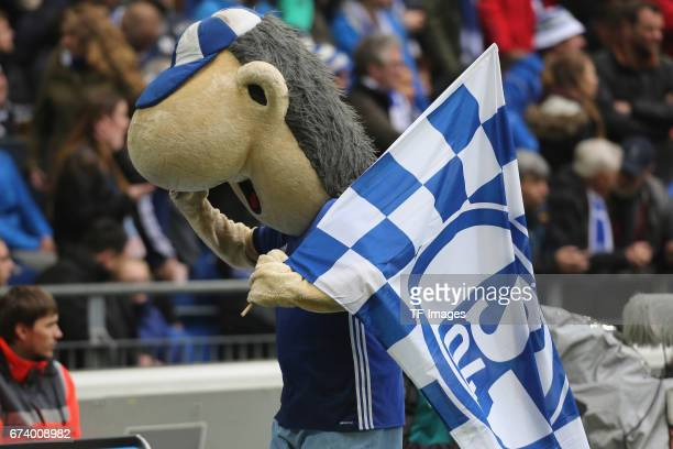 Mascot of Schalke Erwin is seen during the Bundesliga match between FC Schalke 04 and RB Leipzig at VeltinsArena on April 23 2017 in Gelsenkirchen...