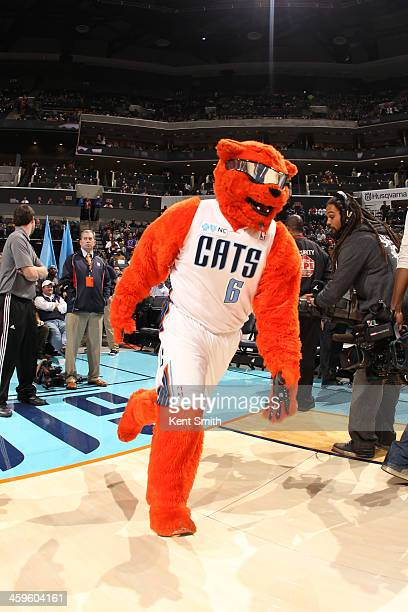 Mascot of the Charlotte Bobcats runs onto the court against the Miami Heat during the game at the Time Warner Cable Arena on November 16 2013 in...