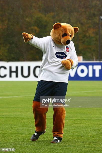 Mascot Paule of Heidenheim is seen prior the 3 Liga match between 1 FC Heidenheim and Werder Bremen II at the GagfahArena on October 17 2009 in...