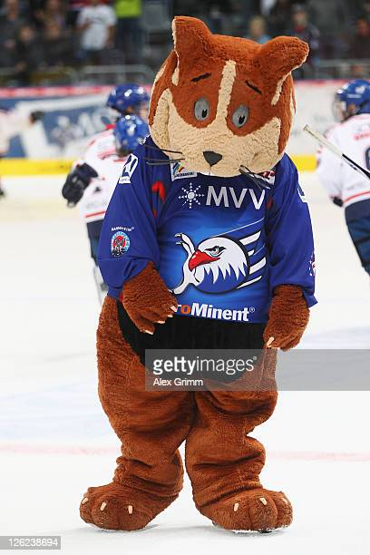 Mascot 'Udo' walks on the ice after the DEL match between Adler Mannheim and Eisbaeren Berlin at SAP Arena on September 23 2011 in Mannheim Germany