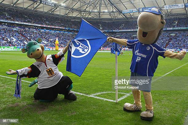 Mascot Urmel of the Ice Hockey World Championships in Germany and mascot Erwin of Schalke pose before the Bundesliga match between FC Schalke 04 and...
