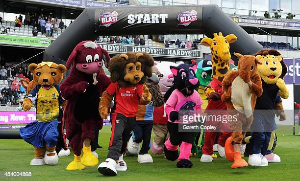 Mascots take part in the mascot race during Natwest T20 finals day at Edgbaston on August 23 2014 in Birmingham England