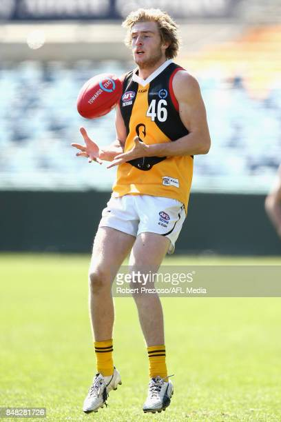 Mason Dewit of Dandenong Stingrays marks the ball during the TAC Cup Preliminary Final match between Geelong and Dandenong at Simonds Stadium on...