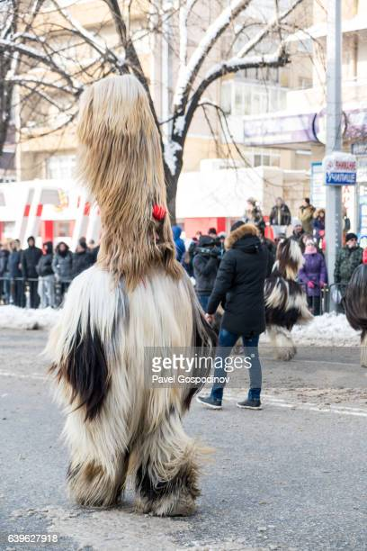 Masquerade Participant Wearing A Traditional Kukeri Costume During A Traditional Kukeri Festival