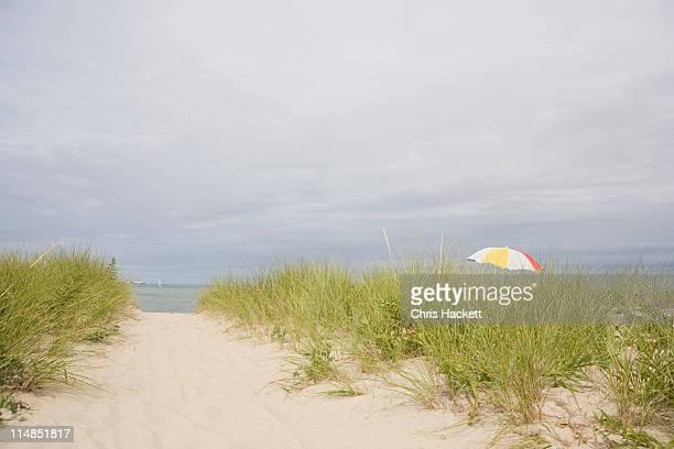 USA, Massachusetts, beach umbrella among Marram grass on beach