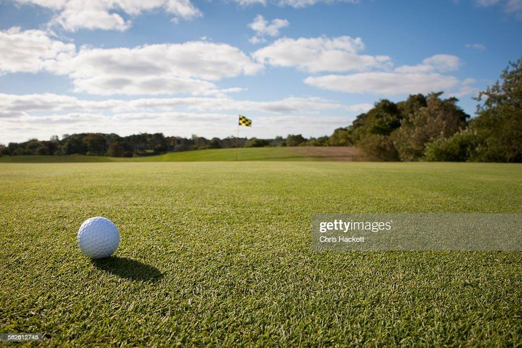 USA, Massachusetts, Golf ball on grass in golf course : Stock Photo