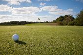 USA, Massachusetts, Golf ball on grass in golf course