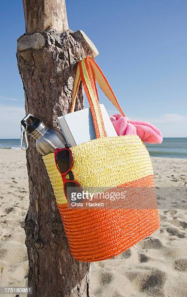 USA, Massachusetts, Nantucket, Bag hanging on tree trunk at sandy beach