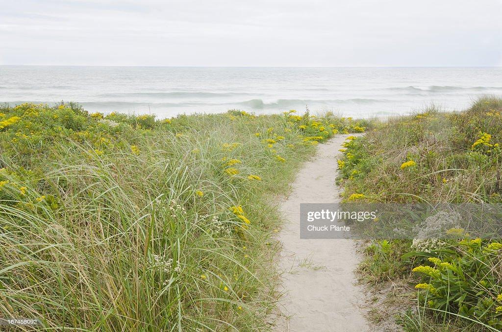 USA, Massachusetts, Nantucket Island, Footpath leading to beach : Stock Photo