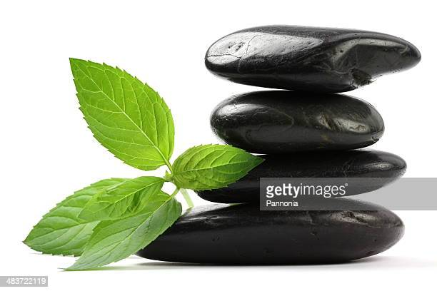 Massage Stones with Mint Leaves