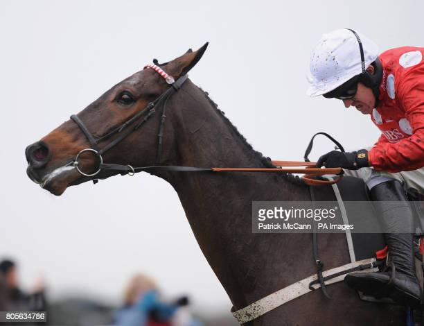 Master Of The Hall ridden by Barry Geraghty wins the Sign Up Bonus At betinternetcom Novices' Hurdle during Tingle Creek Day at Sandown Racecourse...